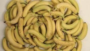 Hoeveel koop je wereldwijd voor vijf dollar aan eten