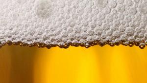 Het effect van alcohol op je hersenen