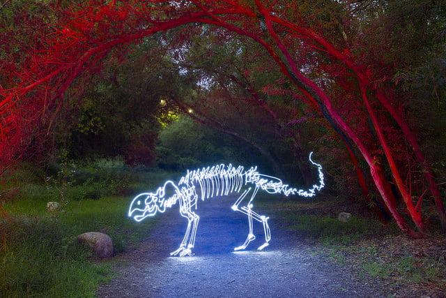 Darren Pearson lichtschildering