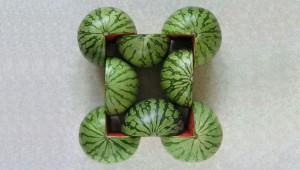 Groenten- en fruitcomposities