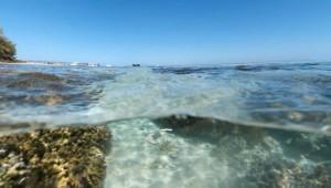 Onderwater met Google Maps