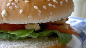 De wetenschap achter eetlust