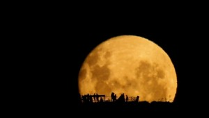 Volle maan silhouetten