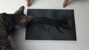 Geanimeerde optische illusie