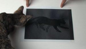 Geanimeerde optische illusies